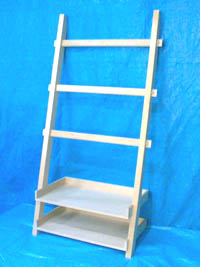ladder-whole2.jpg